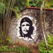 Portrait Che Guevara on a wall, a mosaic — Stock Photo