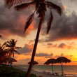 Beach at sunset — Foto de Stock