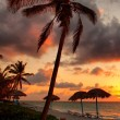Beach at sunset — Stockfoto
