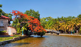 Foot-bridge in Hesone park — Stock Photo