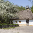 Old ukrainian rural house — Stock Photo #27741489