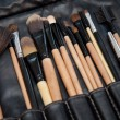 Professional makeup brush set close-up — Stock Photo