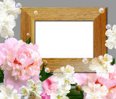 Peony and wooden frame — Foto Stock