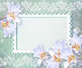 White lily and openwork frame — Stock Photo