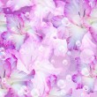 Gladiolus and bubbles - Stock Photo