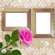 Rose and wooden frame - Stockfoto