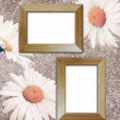 Grunge background with daisies and photo frame — Stock Photo
