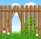 Wooden fence on green grass with daisy — Stock Vector