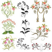 Set of ornaments — Stock Vector