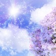 Sun in the sky and lilas — Stock Photo