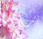 Gladiolos y mariposa — Foto de Stock