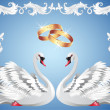 Wedding rings and two swans — Stock Vector