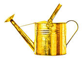 Golden watering can — Stock Photo