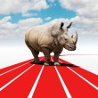 Stock Photo: Rhino challenge