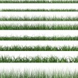 Green grass sample — Stock Photo