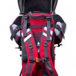 Baby carrier — Stock Photo