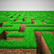 Green labyrinth — Stock Photo