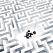 Maze — Stock Photo #41986625