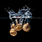 Walnuts splash — Stock Photo