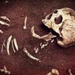 Skull and bone — Stock Photo #50077375