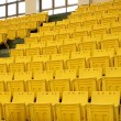 Rows of Yellow Seats — Stock Photo