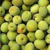 Chinese Green Plums — Stock Photo