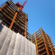 Modern Highrise Construction with Red Crane - Stock Photo