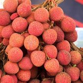 Fresh Lychees for Sale — Stock Photo