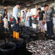 Stock Photo: Fish Auction at Local Fishing Port in Taiwan