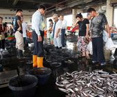 Fish Auction at a Local Fishing Port in Taiwan — Stock Photo