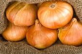 Aprire il sacco di iuta con cipolle — Foto Stock