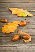 Wooden autumn background with yellow leaves — Stock Photo