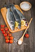 Peixe robalo — Fotografia Stock