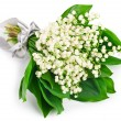 Lily of the valley — Stock Photo #25955875