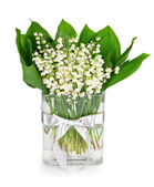 Bouquet of lilies of the valley — Stockfoto
