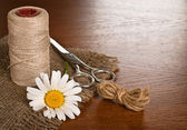 Scissors, cord and daisy flower — Stock Photo