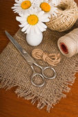 Scissors, cord and daisy flower in vase — Stock Photo