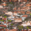 Old brick wall grunge background — Stock Photo