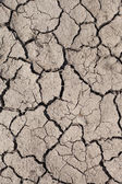 Dry soil. — Stock Photo