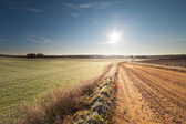 Sun and road. — Stock Photo