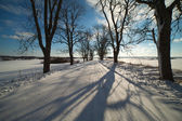 Winter road in Latvia, Europe. — Stock Photo