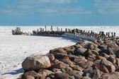 Breakwater in icy Baltic sea. — Stock Photo