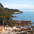 Foto Stock: Sainte-Margurite island at Cannes, France.