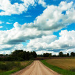 Stock Photo: Rural road.