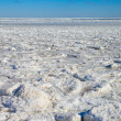 Frozen Baltic sea. — Stock Photo