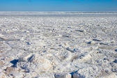 Frozen Baltic sea. — 图库照片