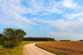Rural road. — Stock Photo