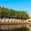 Foto Stock: Seine river at Saint Lois island , Paris.