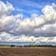 Field and clouds. — Stock Photo #31573623