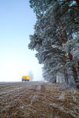 Sisli bir kış sabahı. — Stok fotoğraf